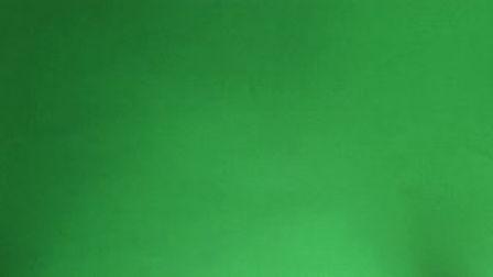 money green.jpg