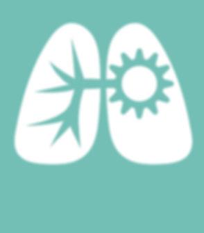 LM Transverse Colour Lungs.jpg