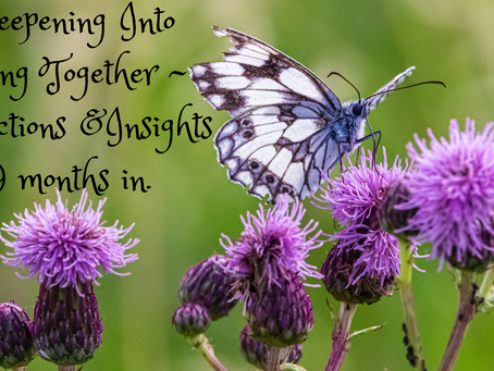 Deepening Into Being Together ~ reflections and insights.