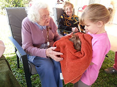 petting zoo for Aged Care, Farm Animals for rest homes