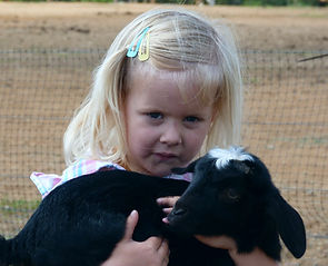 petting zoo for birthday parties, kids birthday party Ideas