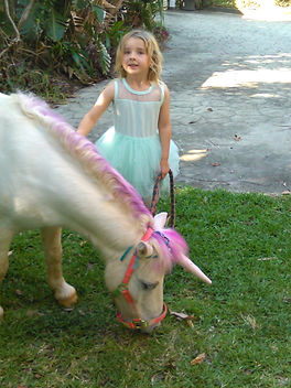 unicorn pony for birthday parties, my little unicorn pony