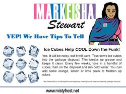 Markeisha Stewart. Tips 2.jpg