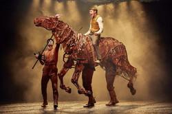War Horse Thomas Dennis (Albert), Tom St