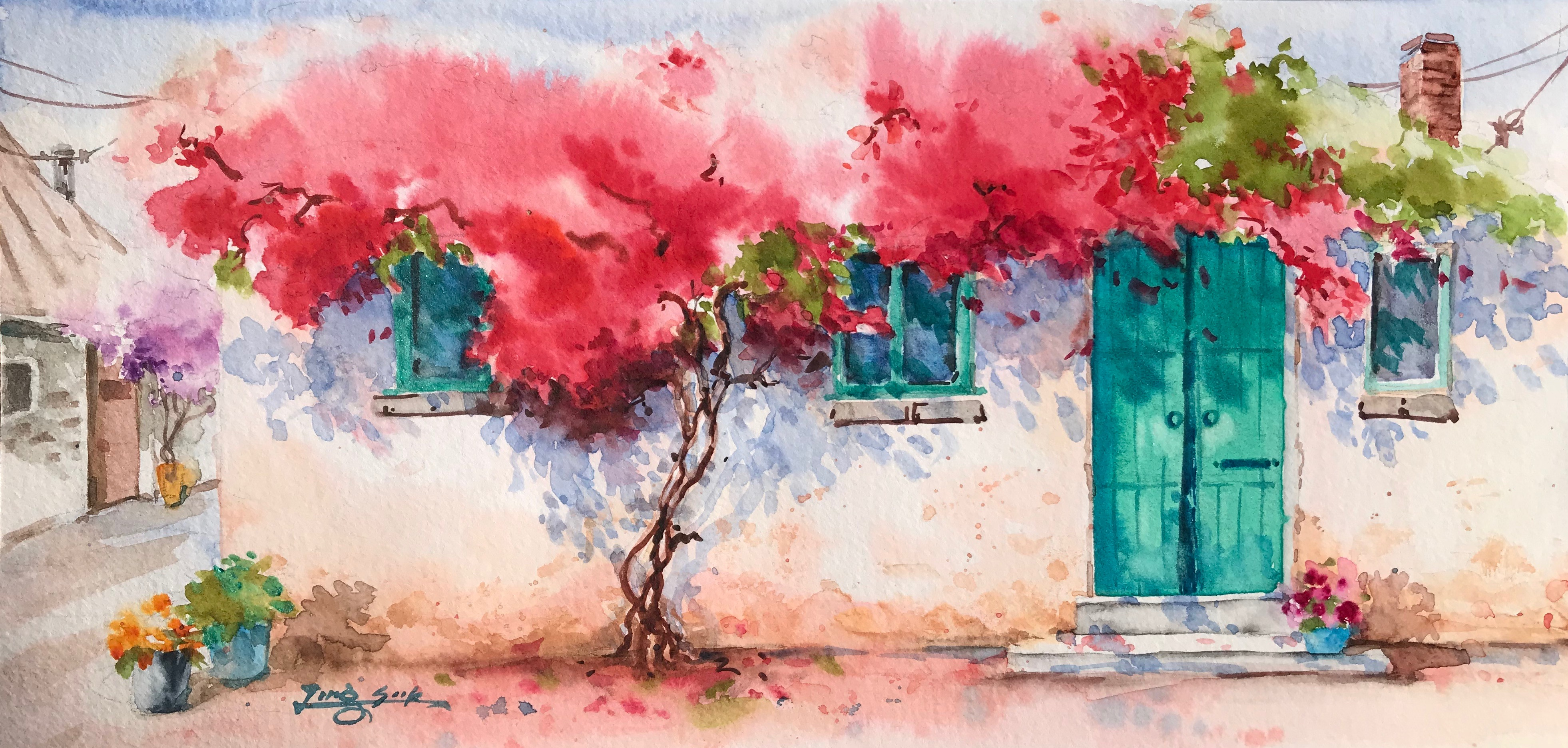 Summer of Bougainvillea