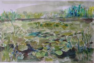 Waterlillies at Glyndebourne.jpg