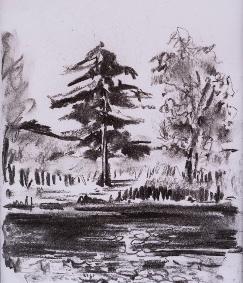 Trees across the lake I