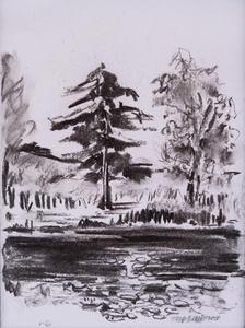 Charcoal Trees .jpg
