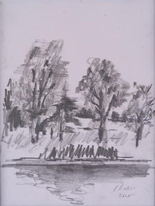 Trees in Graphite.jpg