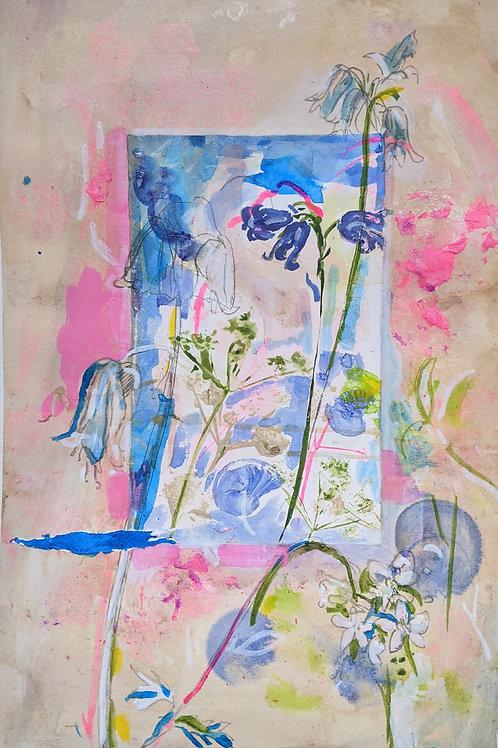 Wildflower Study I - Fine Art Print