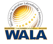 Sweet Tea WALA Logo.png