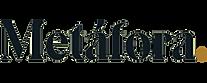 logo_metafora_360x.png
