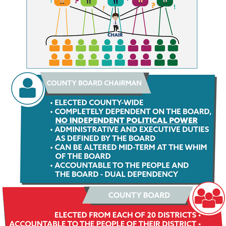 County Executive Referendum