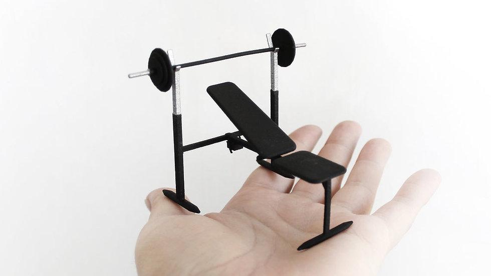 Mini Banc de musculation