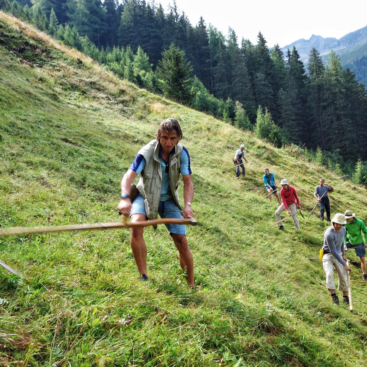 Mähen am Bergmahd Ocherloch