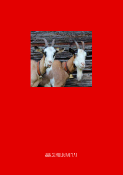 Beisswurm, 4. Jahrgang, Rückseite