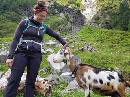 Von magischen Kräutern und Ziegenwanderungen