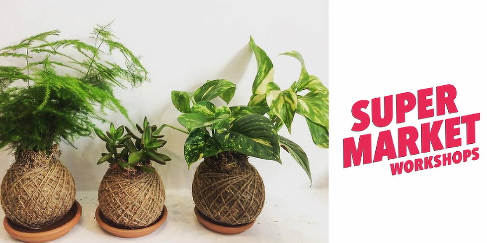 SOLD OUT Kokedama Workshop by Little Wild Things - SouthSide