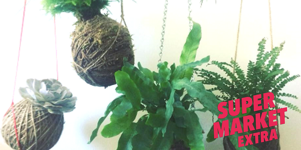 Kokedama Workshop by Little Wild Things at The Hive NEW DATE