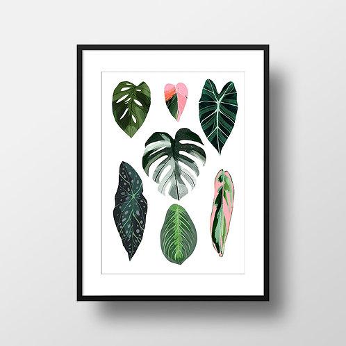 A4 Leaves Giclee Print