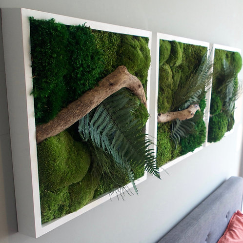 Forest Floor Triptych