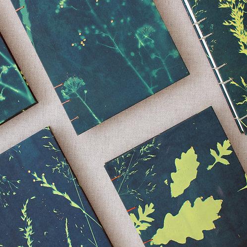 Cyanotype Journal