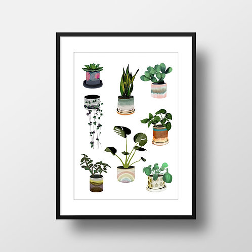 A3 Plants and Planters Giclee Print