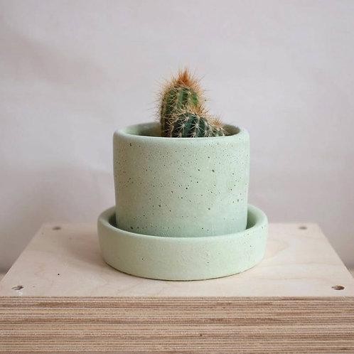 Small Concrete Plant Pot, Green