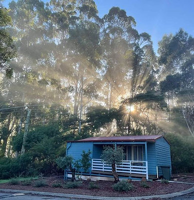 Blue wren cottage.jpg