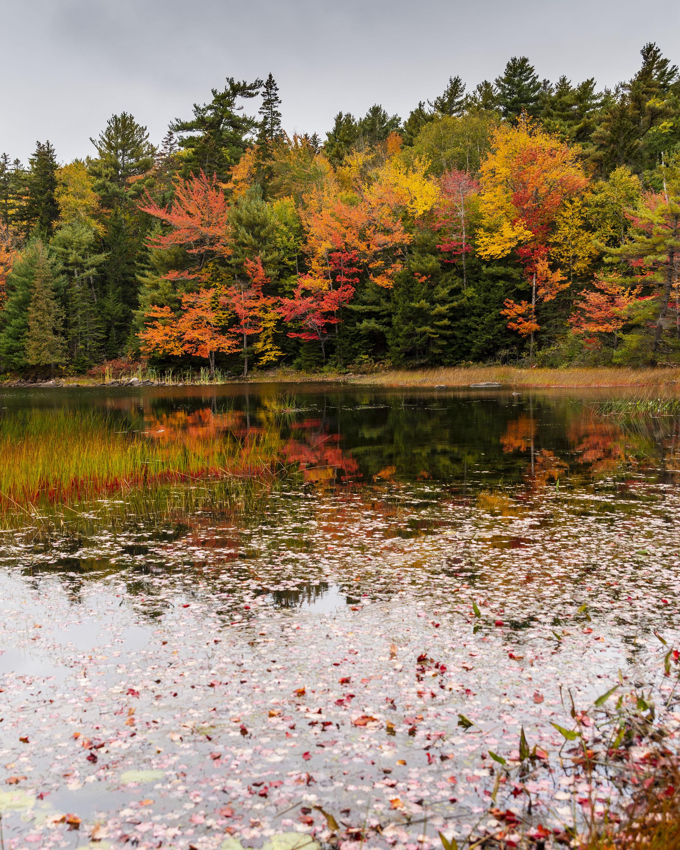 Eagle Lake 3