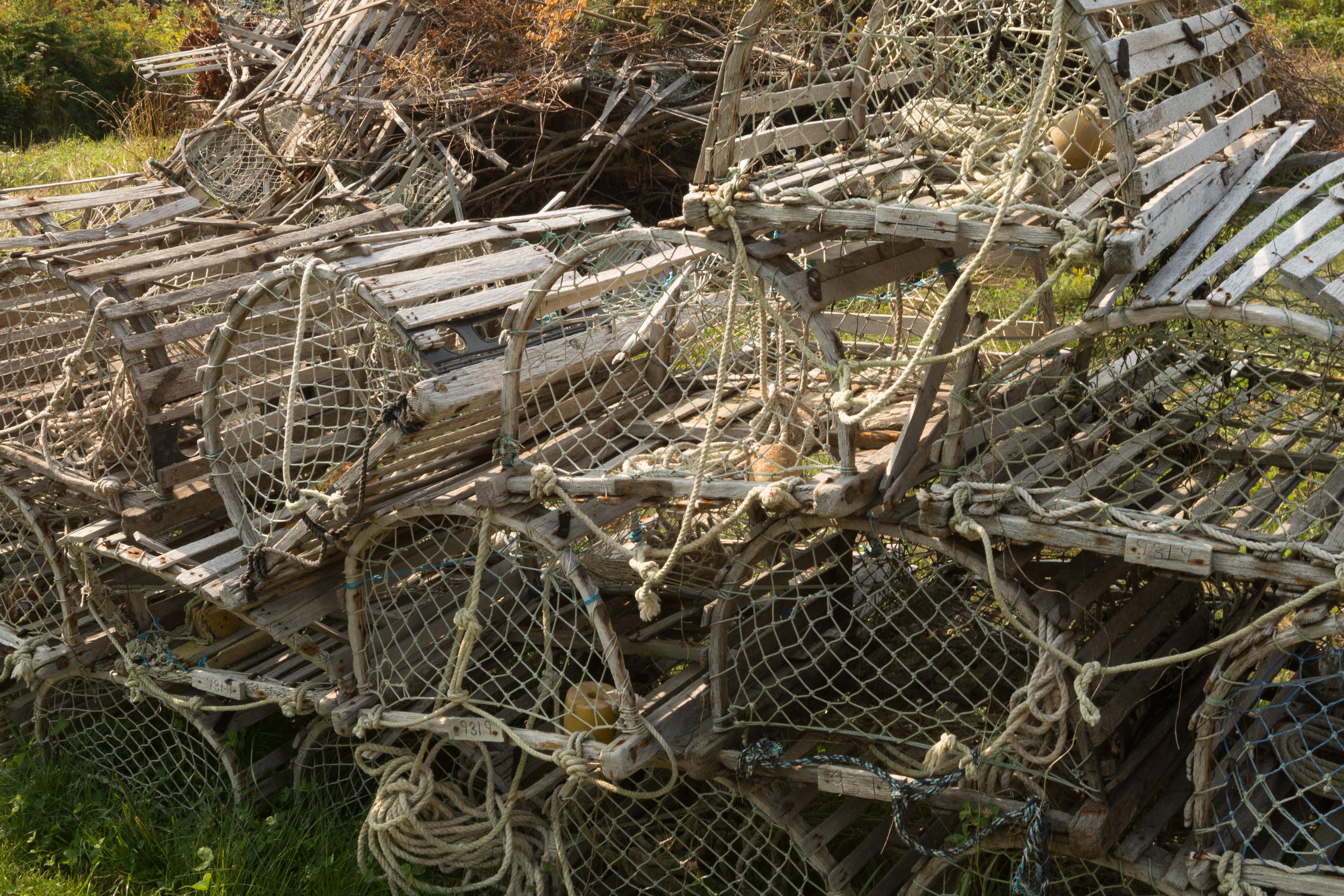 Old Lobster Traps