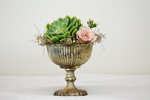 Mini Succulent Centerpiece