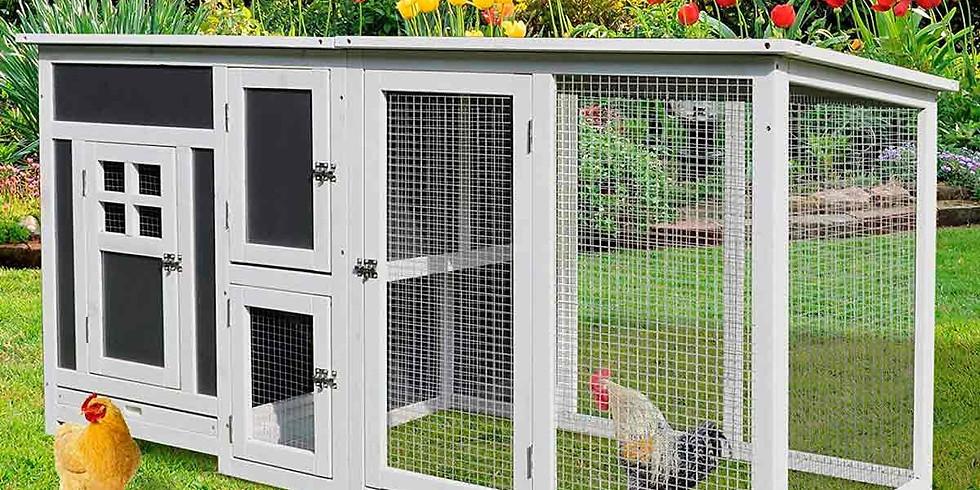 Chicken Coops for Honduras