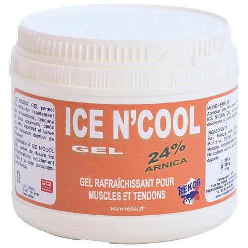 Rekor - Ice N' Cool Gel