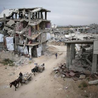 gaza deliveries donkey cart.png
