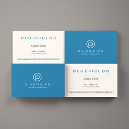 Bluefields Property Consultant