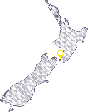 NZ-map-lines.png