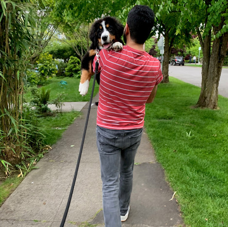 Hapoo and Dad on a walk , 5-27-19