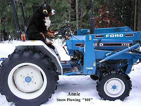 Annie drivingTractor 101 1-10-04.jpg