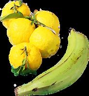 obj_fruit.png