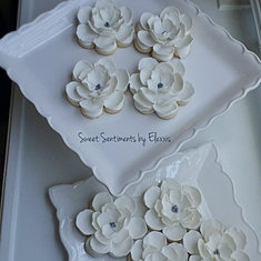 sweetsentiments COOKIES