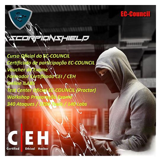 CEHSCORPION.jpg