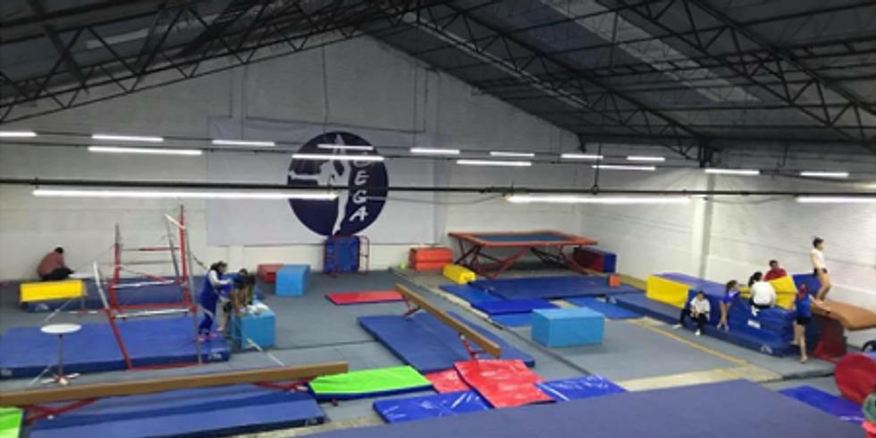 Salida Gimnastica Enero 2019
