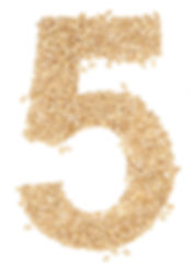 5 number,from wheat berries. on white._edited.jpg