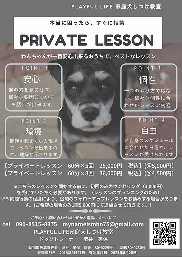 プライベートレッスン.jpg