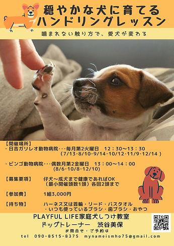 202107 家庭犬のためのハンドリングレッスン (3).jpg