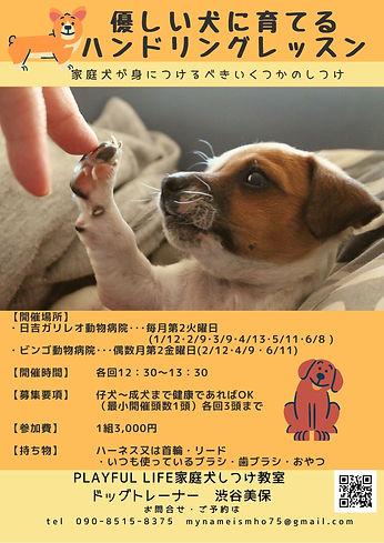202101 家庭犬のためのハンドリングレッスン.jpg