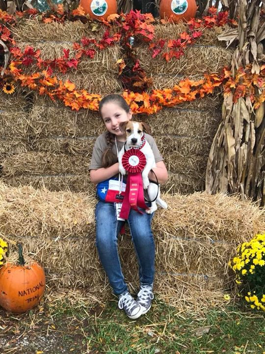 Erynn was 2nd place Child Handler at Nationals with Bolt!
