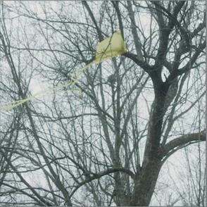 黃色風箏 Yellow Kite