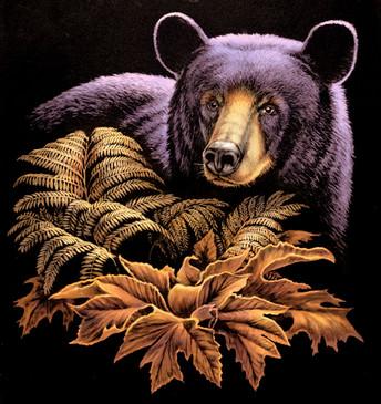 OC068 Black Bear foliage
